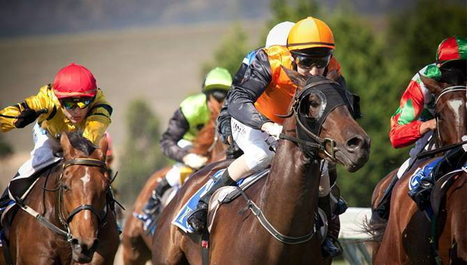 British horseracing authority authorised betting partner forecast betting